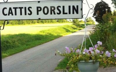 Cattis Porslin
